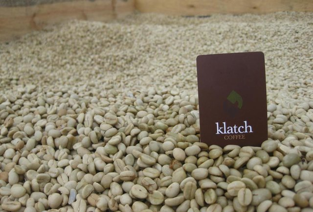 Klatch beans-The top 11 coffee roasters in the nation, as voted by super-serious coffee nerds